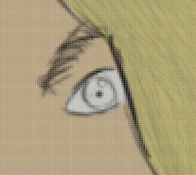 Elmer's eyebrow